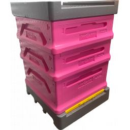 Pink Hive.png